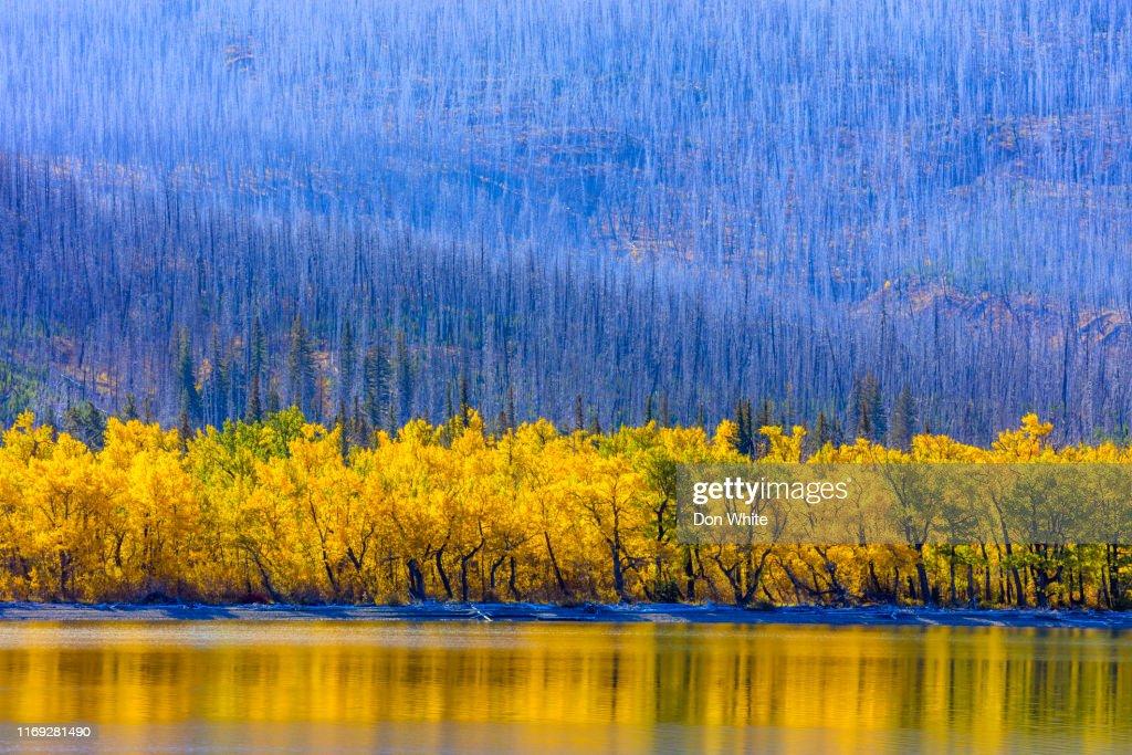 Glacier National Park in Montana USA : Stock Photo