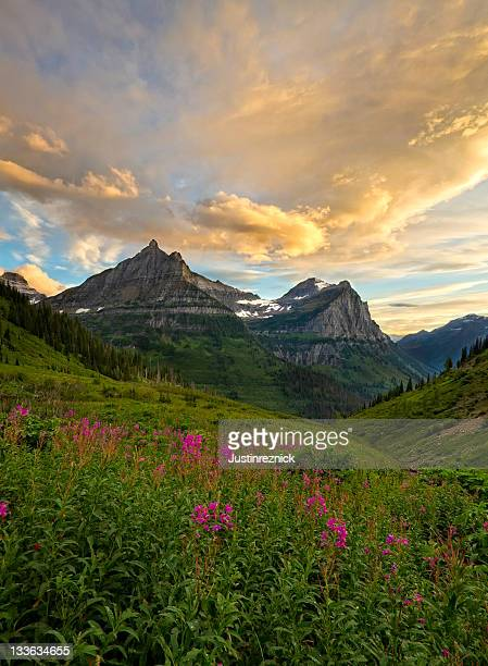 Glacier National Park Mountain Scene