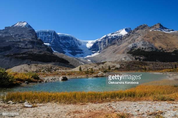 glacier near columbia ice fields, alberta, canada. - istock photos et images de collection