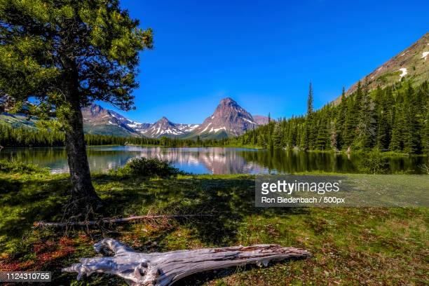 glacier np two medicine - two medicine lake montana imagens e fotografias de stock