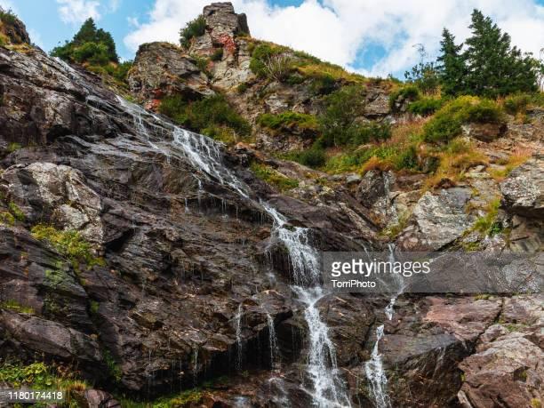 glacier water flowing flowing on a rock in high carpathian mountains - agua descendente fotografías e imágenes de stock