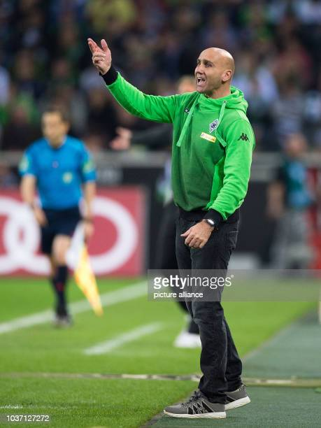 Gladbach coach Andre Schubert gestures during the German Bundesliga soccer match between Borussia Moenchengladbach and FC Ingolstadt 04 at...