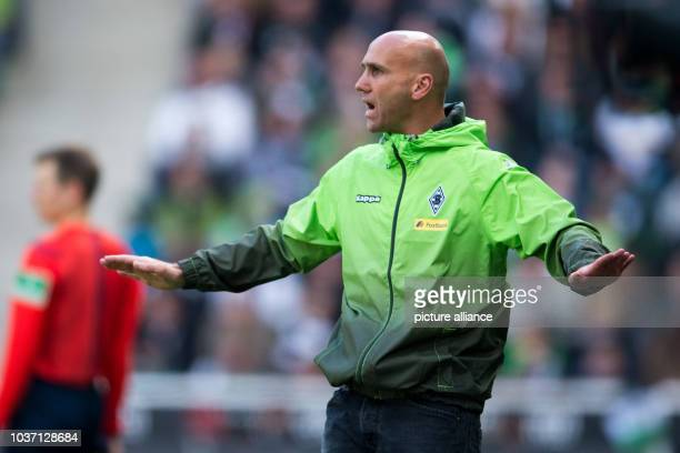 Gladbach's coach Andre Schubert gestures during the German Bundesliga soccer match between Borussia Moenchengladbach and 1899 Hoffenheim in Borussia...