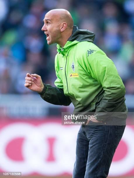 Gladbach's head coach Andre Schubert gestures during the German Bundesliga soccer match between Borussia Moenchengladbach and 1899 Hoffenheim at...