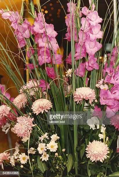 Gladiolen Familie der Schwertliliengewächse auch Siegwurz genannt und Chrysanthemen Familie der Korbblütler auch Winteraster genannt in einem Gesteck