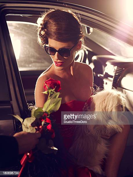 Glamorous Celebrity Woman In Red Evening Gown Receiving Rose