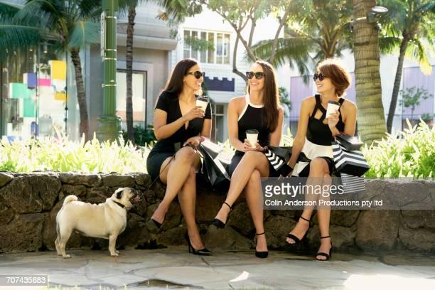glamorous friends sitting on stone wall drinking coffee with dog - ホノルル ストックフォトと画像