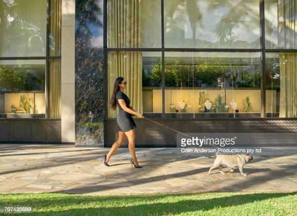 Glamorous Mixed Race woman walking dog on sidewalk
