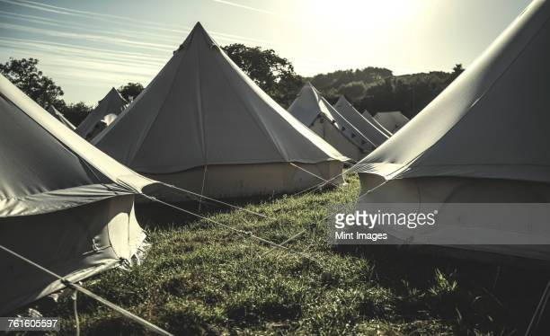 Glamping bell tents, traditional canvas tents in an enclosure on the camping grounds at an outdoor music festival.