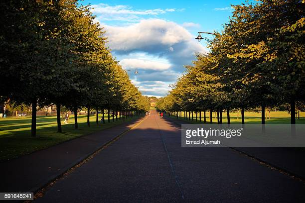 glasgow greens park - glasgow green stock pictures, royalty-free photos & images