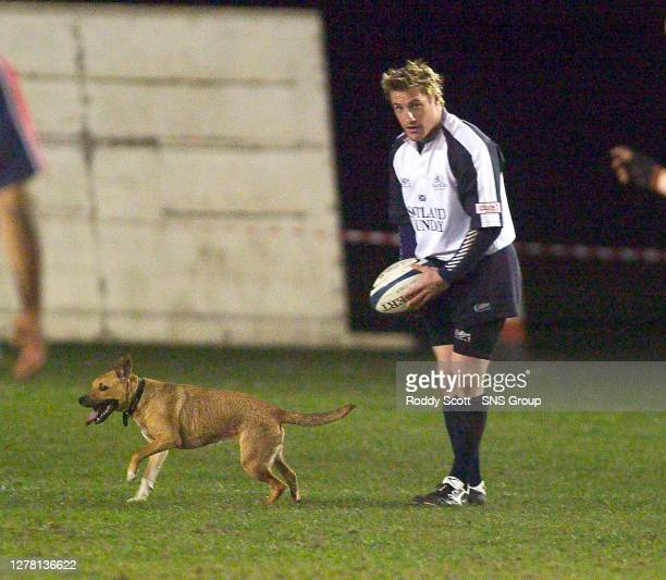 Doggone......Glasgow centre Alan Bulloch is sidestracked by a canine friend.