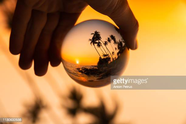 Glass ball on the background of palm trees and the sea at sunset