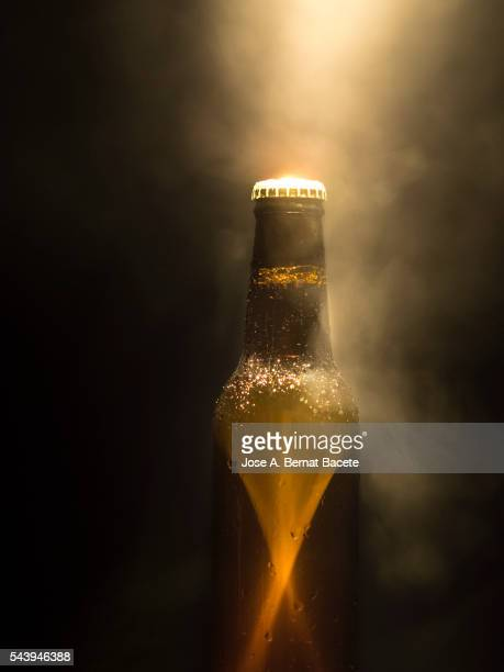 Glass beer bottle in a cold environment with smoke