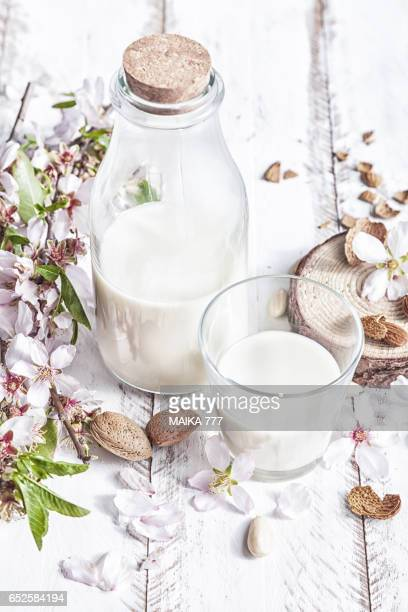 Glass bottle of homemade almond milk and flowers of almond tree
