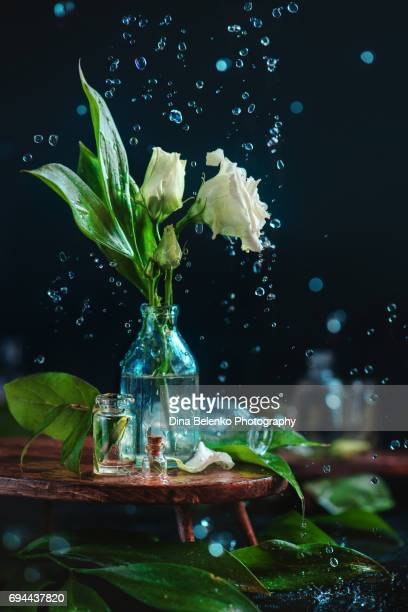 Glass bottle with white flowers, buds and falling water drops
