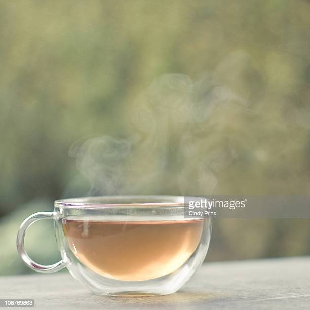 Glass cup of hot steaming tea