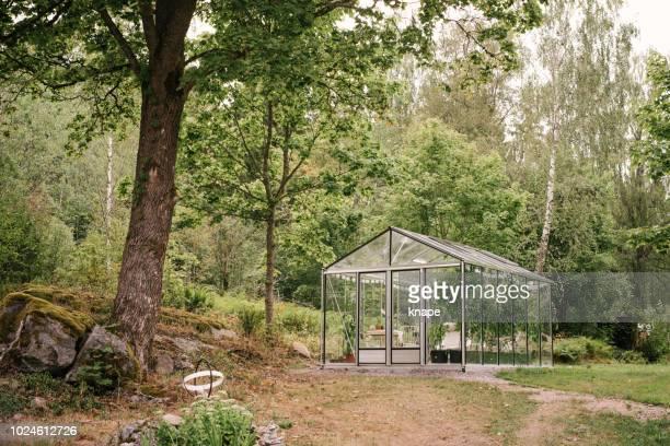 glas-gewächshaus im garten - gewächshäuser stock-fotos und bilder