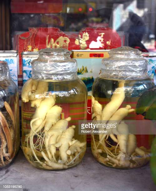 SAN FRANCISCO CALIFORNIA SEPTEMBER 14 2018 Glass jars filled with ginseng roots displayed in the window of a herbal medicine shop in Chinatown in San...