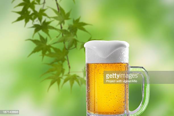 Glass of beer and green leaves