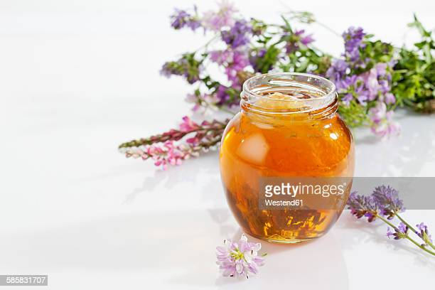 Glass of blossom honey with honeycomb and blossoms on white ground