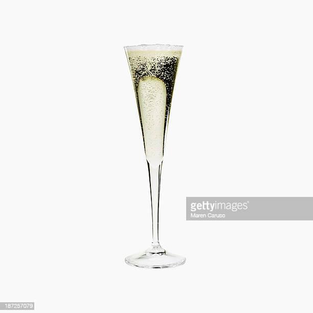 glass of champagne with white background - gloria caruso foto e immagini stock