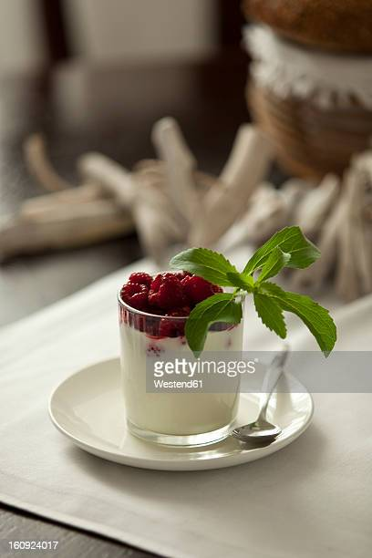 Glass of cream with raspberry and stevia, close up