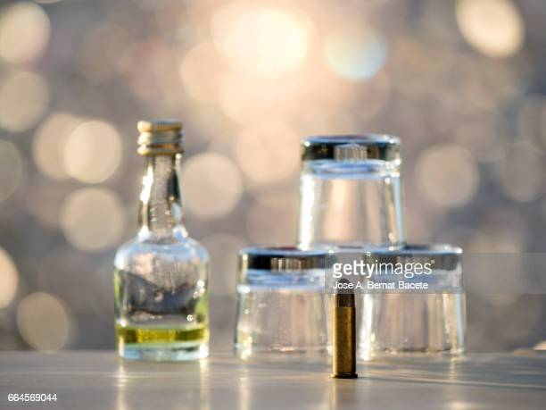 Glass of crystal of chupito empty of an alcoholic drink and a bottle of liquor of mini bar , illuminated by the light of the Sun