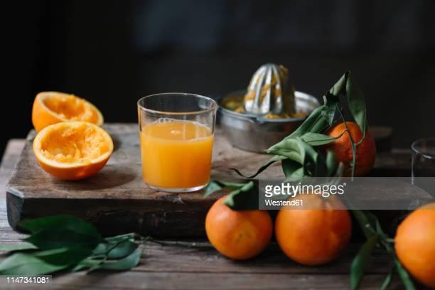 glass of freshly squeezed orange juice - orange juice stock pictures, royalty-free photos & images
