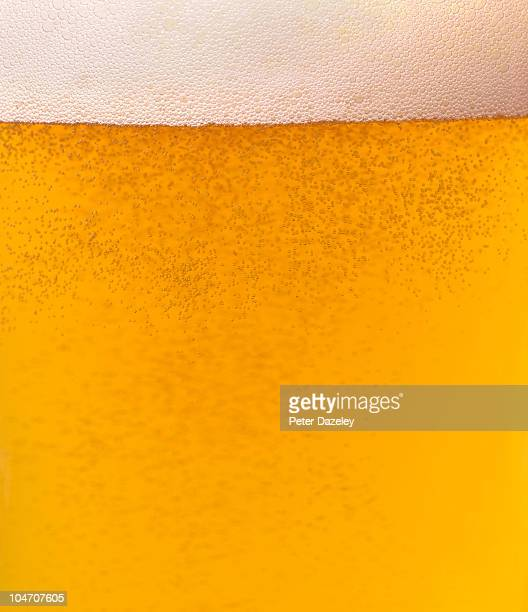 Glass of lager beer with copy space