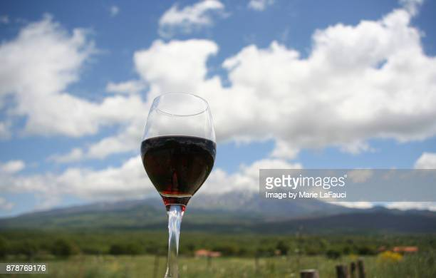 A glass of red wine held up in the sky
