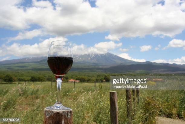 A glass of red wine on a wooden post with Mount Etna in background.