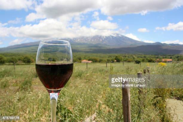 a glass of red wine with mount etna in background. - marie lafauci stock pictures, royalty-free photos & images