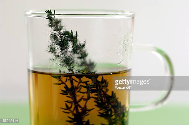 glass of thyme tea, close-up - thyme stock pictures, royalty-free photos & images