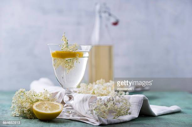 glass of water flavoured with elderflower sirup and lemon - ニワトコ ストックフォトと画像