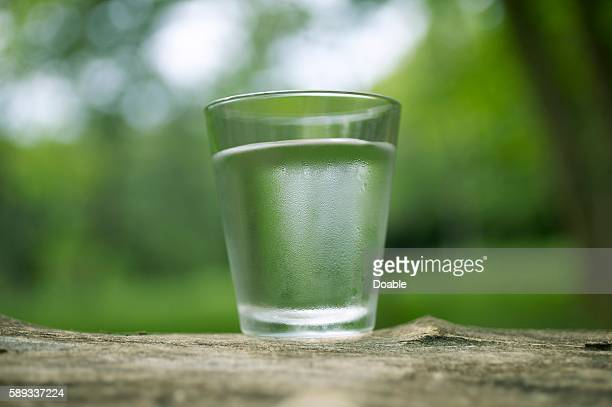 Glass of water on a tree stump