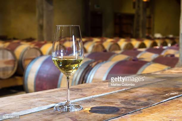 glass of white wine in a winery cellar, new zealand - ホークスベイ地域 ストックフォトと画像