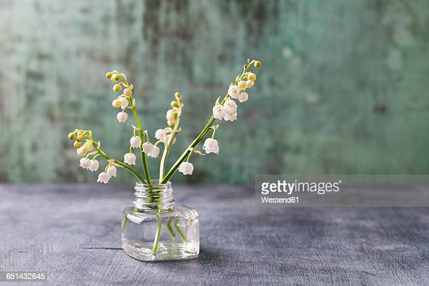 glass with lilies of the valley - mughetti foto e immagini stock