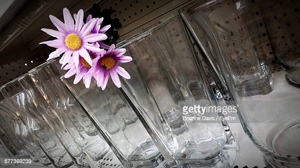 glasses arranged on table with flowers - brianne stock pictures, royalty-free photos & images