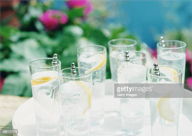 Glasses of gin and tonic with lemon slices on tray in garden