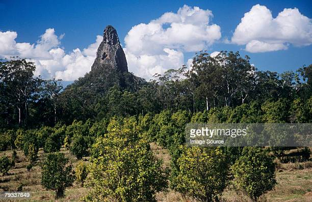 glasshouse mountains - glass house mountains stock pictures, royalty-free photos & images