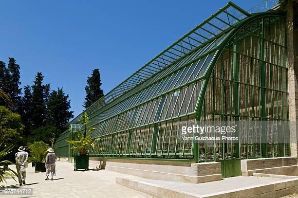 glasshouse of public botanic garden,montpellier, herault, languedoc-roussillon, france - montpellier stockfoto's en -beelden