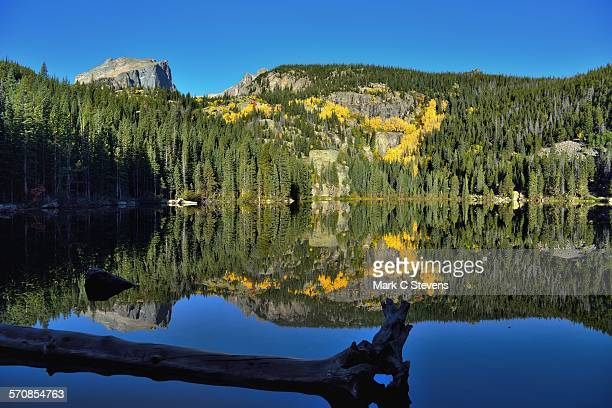 glass-like reflections of trees and mountains - big bear lake stock photos and pictures