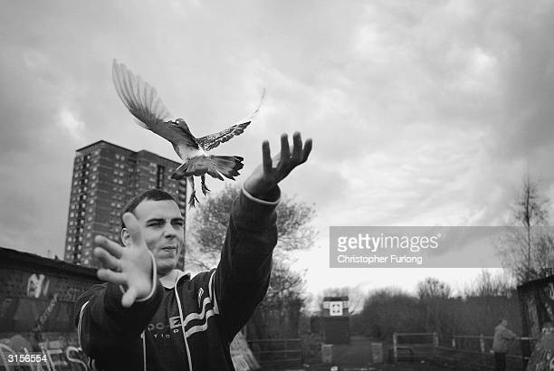Glaswegian Pigeon Fanciers Compete In Traditional Pastime