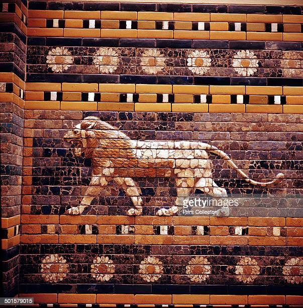Glazed Brick relief of a lion on the walls of the Sacred Way leading to the Ishtar Gate Babylon c580 BC In the collection at the Pergamon Museum in...