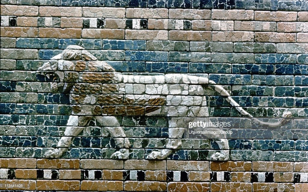 Glazed terracotta lion from the processional way from the Temple of Marduk to the Ishtar Gate, one of the eight fortified gates of Nebuchandrezzar's (Nebuchanezzar) city of Babylon. Neo-Babylonian c575 BC. ... : News Photo