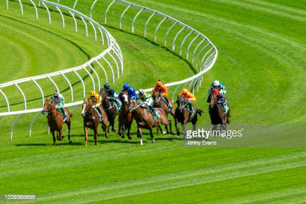 Glen Boss on Cascadian makes contact with James McDonald on Imaging race 4 the Liverpool City Cup during Sydney Racing at Royal Randwick Racecourse...