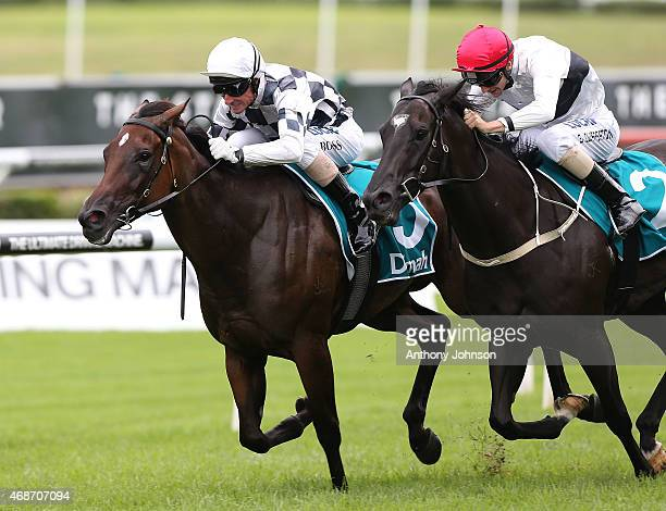 Glen Boss rides Miss Cover Girl to win race 5 The P J Bell Stakes during Sydney Racing at Royal Randwick Racecourse on April 6 2015 in Sydney...