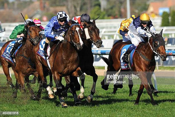 Glen Boss riding Chivalry defeats Damien Oliver riding Awesome Rock and Nicholas Hall riding Nordic Empire in Race 6 The HDFMcNeil Stakes during...