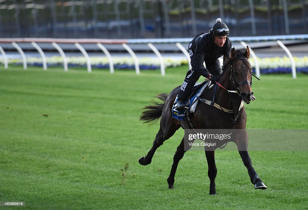 Glen Boss riding Kermadec during a trackwork session at Moonee Valley Racecourse on October 15, 2015 in Melbourne, Australia.