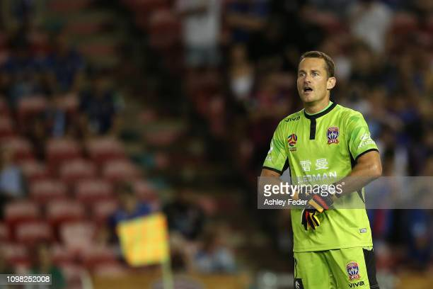Glen Moss of the Newcastle Jets reacts during the round 15 A-League match between the Newcastle Jets and the Central Coast Mariners at McDonald Jones...
